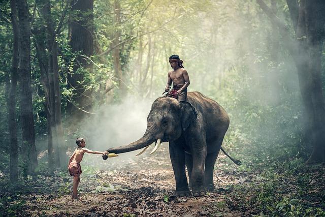 कानू और हाथी